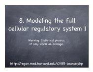 8. Modeling the full cellular regulatory system 1