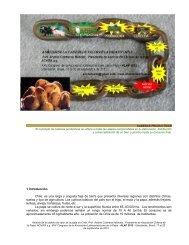 formas de comercializacion - Associação Brasileira da Batata (ABBA)