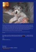 Niko - Bobtail Nothilfe - Seite 2