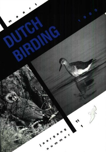 Ok - Dutch Birding