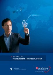 English ( pdf, 991 Kb ) - Luxembourg