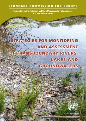 STRATEGIES FOR MONITORING AND ASSESSMENT OF ... - UNECE