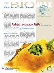 Bakterien in der Falle - Wie Forscher die Abwehr auf ... - Scinexx
