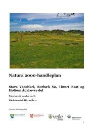 Natura 2000-handleplan Store Vandskel, Rørbæk Sø, Tinnet Krat og ...