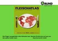 download - Naturschule Konstanz