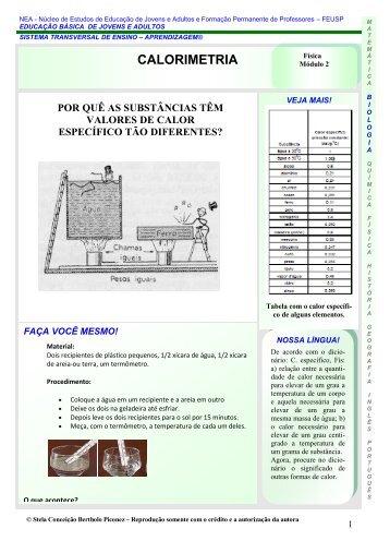 calor ficha-jaqueline.pdf - USP