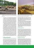 Moravská Amazonie a ostatní lužní lesy: konec, nebo ... - Hnutí DUHA - Page 3