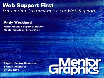 Web Support and Mergers - Service Strategies