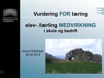 Vurdering for læring - lærling-/elevmedvirkning i skole og - Udir.no