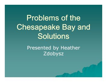 Problems of the Chesapeake Bay