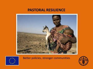 Improved livelihoods and resilience - Disaster risk reduction