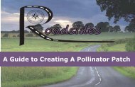 A Guide to Creating A Pollinator Patch - Conservation - Ontario ...