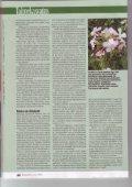 Taimedest võõrliigid vallutavad Eesti - Page 2