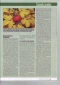 Taimedest võõrliigid vallutavad Eesti - Page 3