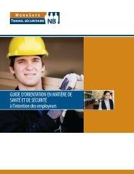 Guide d'orientation en matière de santé et de sécurité à l'intention ...