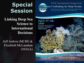 Linking deep sea science to international decisions