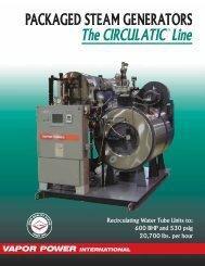 VP Circulatic Line Brochure - California Boiler