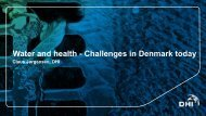 Water and health. Challenges in Denmark today