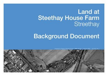 Background Document and Initial Masterplan - Lichfield District ...