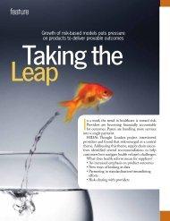 Taking the Leap - Hida