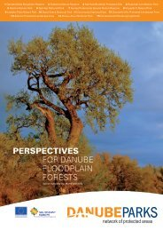 Perspectives for Danube floodplain forests (.pdf ... - DANUBEPARKS