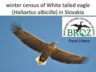 White-tailed Eagle Winter Count in Slovakia (P ... - DANUBEPARKS