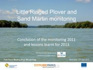Danube-wide Monitoring of Little-ringed Plover and - DANUBEPARKS