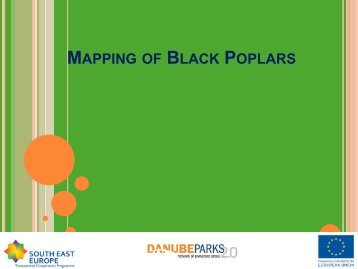 MAPPING OF BLACK POPLARS - DANUBEPARKS
