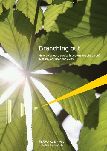 Branching out: how do private equity investors ... - Ernst & Young