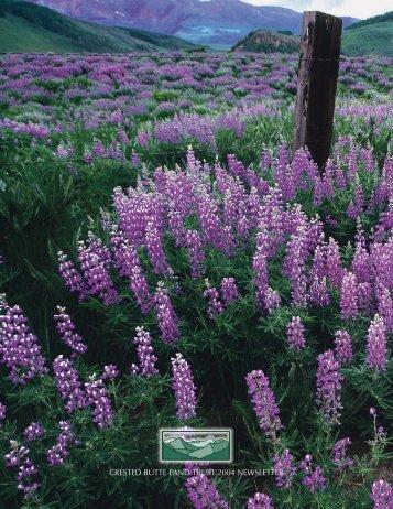 *NEWSLETTER 2004 - Crested Butte Land Trust