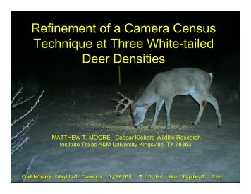 Refinement of a Camera Census Technique at Three White-tailed ...