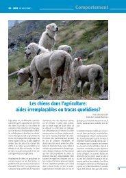 Les chiens dans l'agriculture: aides irremplaçables ou tracas ...