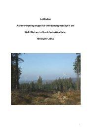 """Leitfaden """"Rahmenbedingungen für Windenergieanlagen auf ..."""