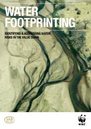 Water Footprinting Report 2009 - SAB
