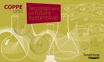 um futuro sustentável - Coppe - UFRJ