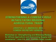 strengthening a comesa's role in faciltating regional agricultural trade