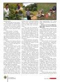 AK?YBL3K31 - Samsun Tarım İl Müdürlüğü - Page 6