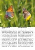 Novice Notranjskega regijskega parka - Presihajoče Cerkniško jezero - Page 4