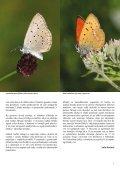 Novice Notranjskega regijskega parka - Presihajoče Cerkniško jezero - Page 5