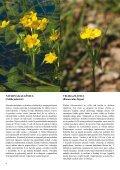 Novice Notranjskega regijskega parka - Presihajoče Cerkniško jezero - Page 6