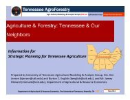 Tennessee & Our Neighbors - Agri-Industry Modeling & Analysis ...