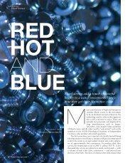 WT_2009_02: TECHNOLOGY BLUED SCREWS