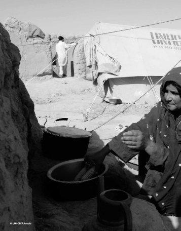 Afghanistan Crisis Report HRI 2010 - DARA