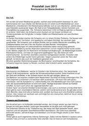 Praxisfall Juni 13. Schweinedysenteriepdf - AG für Tiergesundheit