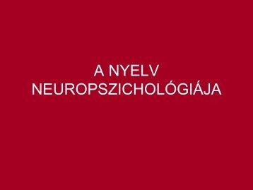 A NYELV NEUROPSZICHOLÓGIÁJA