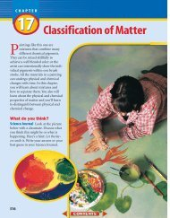 Chapter 17: Classification of Matter