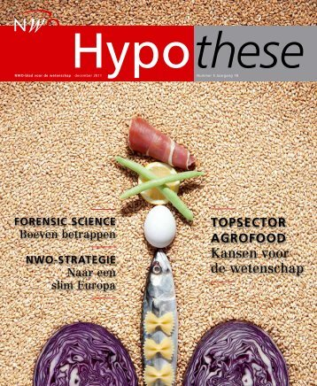 Hypothese - Complex Photonic Systems | COPS
