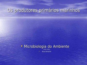 Produtividade primaria - Personal Web Pages
