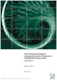 The Environmental Impact Assessment Executive Summary of ... - EKN