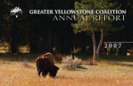 ANNUAL REPORT - Greater Yellowstone Coalition